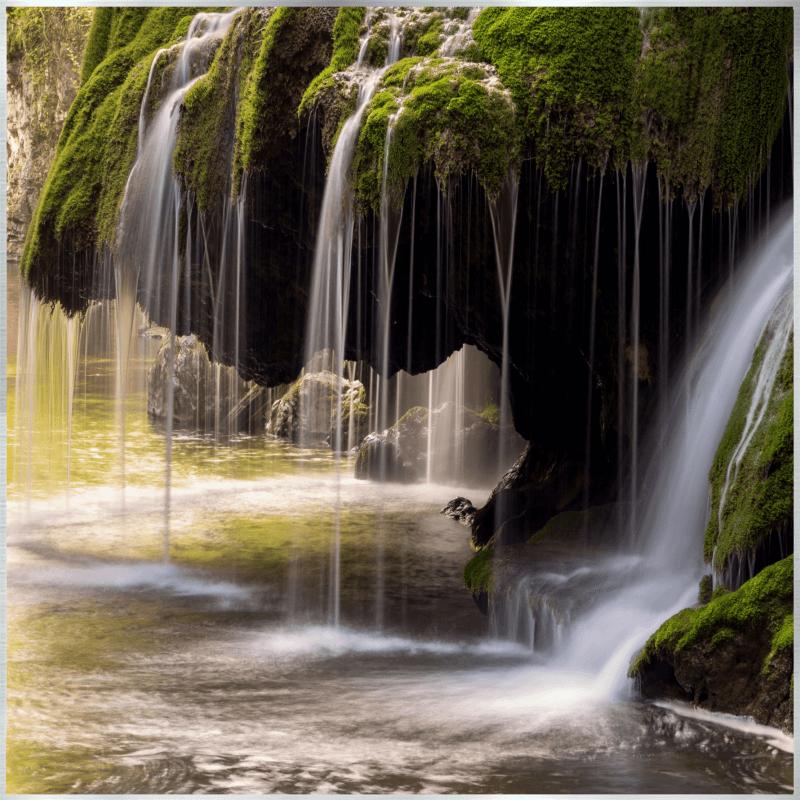 Regenwald Natur Motiv - 003