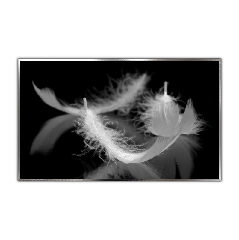 STEINFELD® Glas Infrarotheizung mit Motiv Weiße Federn