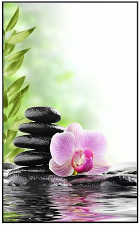 Orchidee Wellness 11