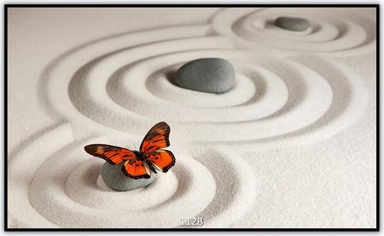 Schmetterling 112