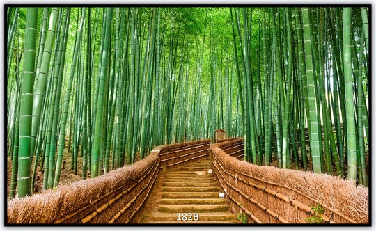 Könighaus Infrarotheizung mit Motiv Bambus