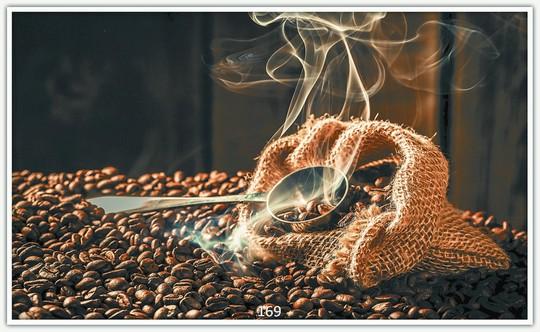 Kaffeebohnen 169