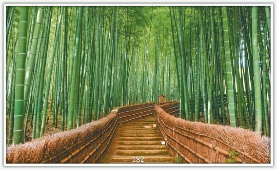Könighaus Infrarotheizung mit Motiv Bambus 182