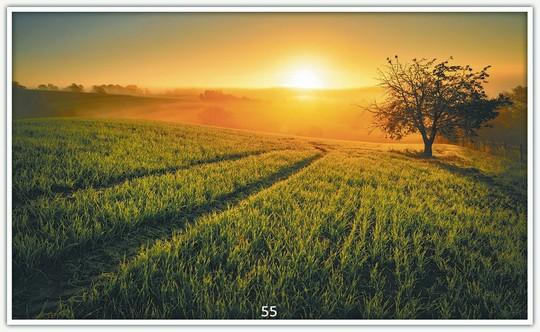 Sonnenuntergang 55