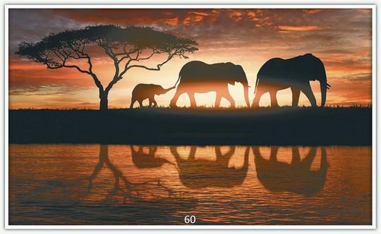 Könighaus Infrarotheizung mit Motiv Elefantenherde 60
